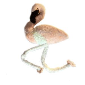 Мягкая игрушка фламинго